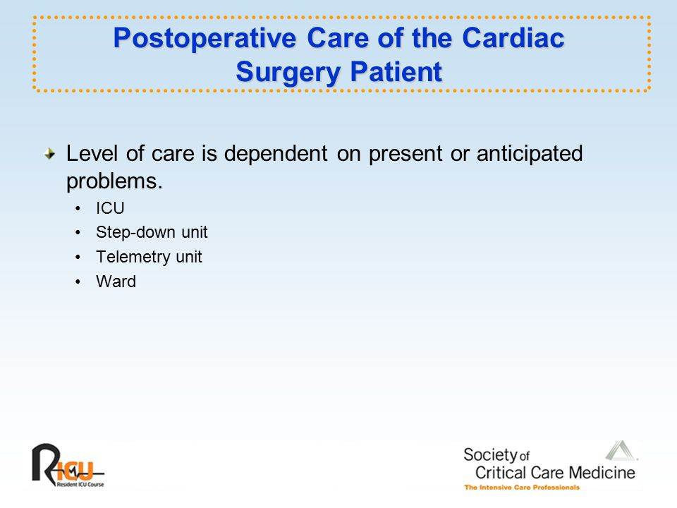 perioperative care of the cardiac surgery patient