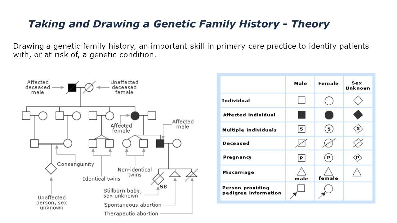 Genetics pedigree worksheet answer key huntingtons disease