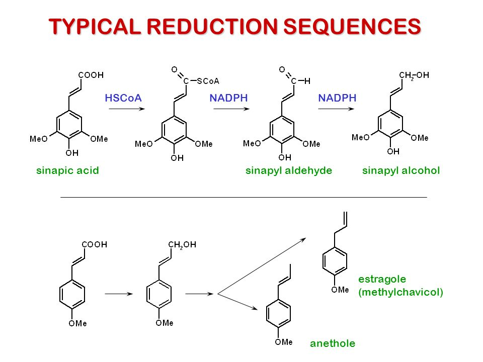 TYPICAL REDUCTION SEQUENCES