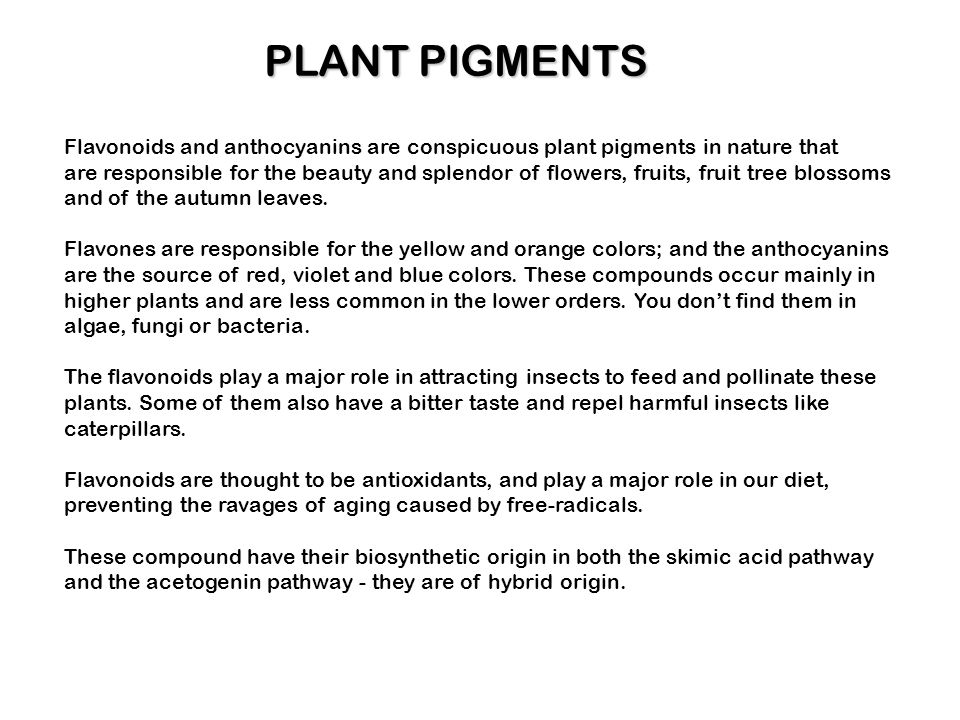 PLANT PIGMENTS Flavonoids and anthocyanins are conspicuous plant pigments in nature that.