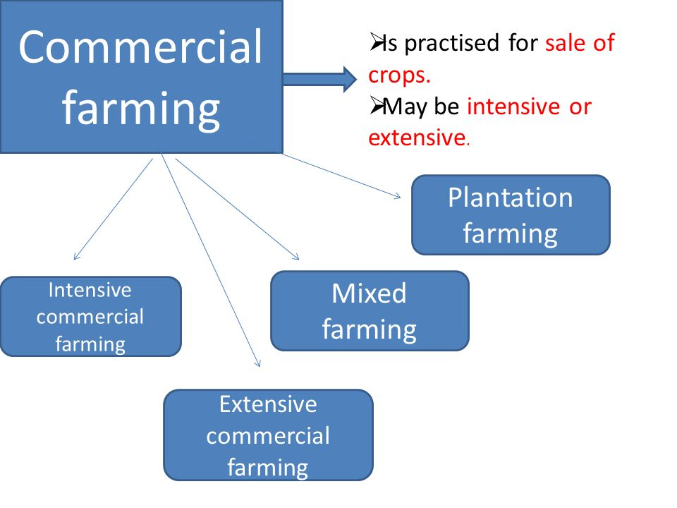 AGRICULTURE IN INDIA. - ppt video online download