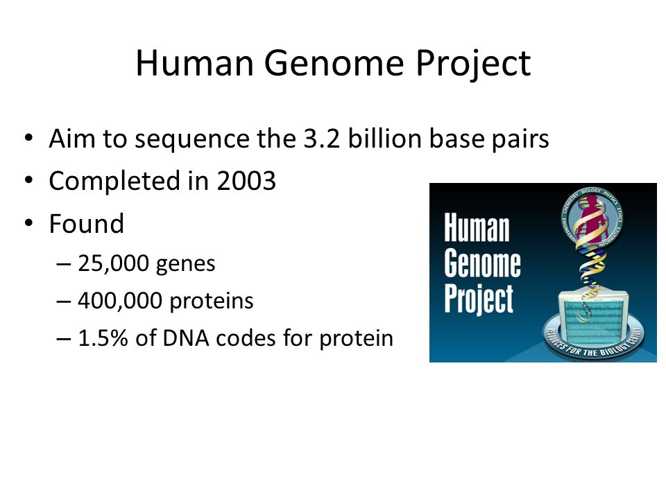 what are the human genome project cloning dna fingerprinting genetic engineering and stem cells 9 unexpected outcomes of human cloning  in which cells are cloned from a human for use in medicine and transplants,  as would dna fingerprinting.
