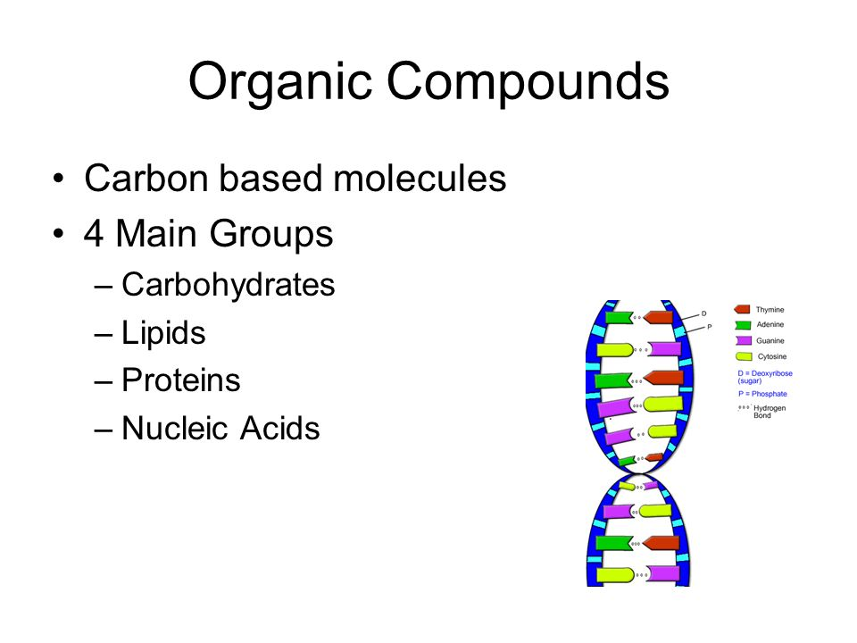 Organic Compounds. - ppt video online download