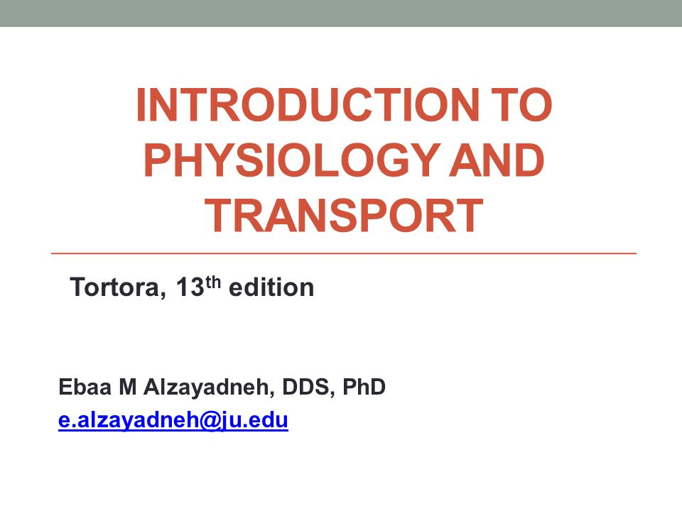 Introduction to Physiology and Transport - ppt video online download