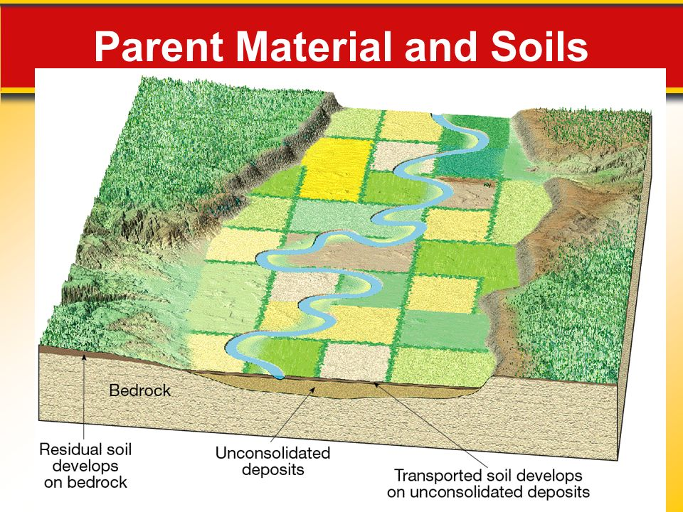 Weathering soil and erosion ppt video online download for Soil material