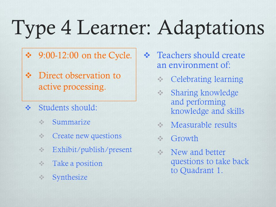 Type 4 Learner: Adaptations