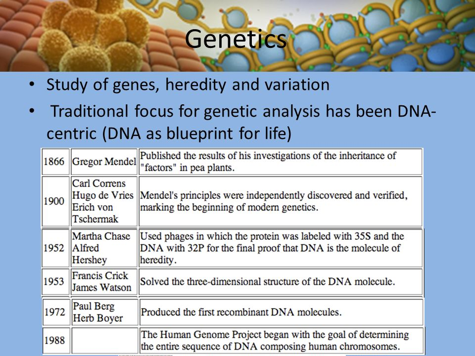 an analysis of the genetic mutations in general life Discover yourself through a personal genetic analysis  specifically, they had  this mutation in a shorter version of the gene that is expressed only in skin so far .