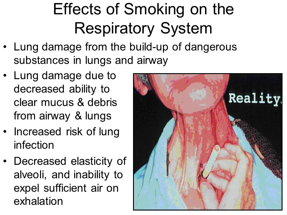 effects of smoke belching to health Generally smokers are less healthy and less physically fit than non-smokers in addition, they take more days off work through illness than in the long-term, smoking causes other diseases apart from those mentioned above below is a list of diseases, illnesses and other effects that are caused from.