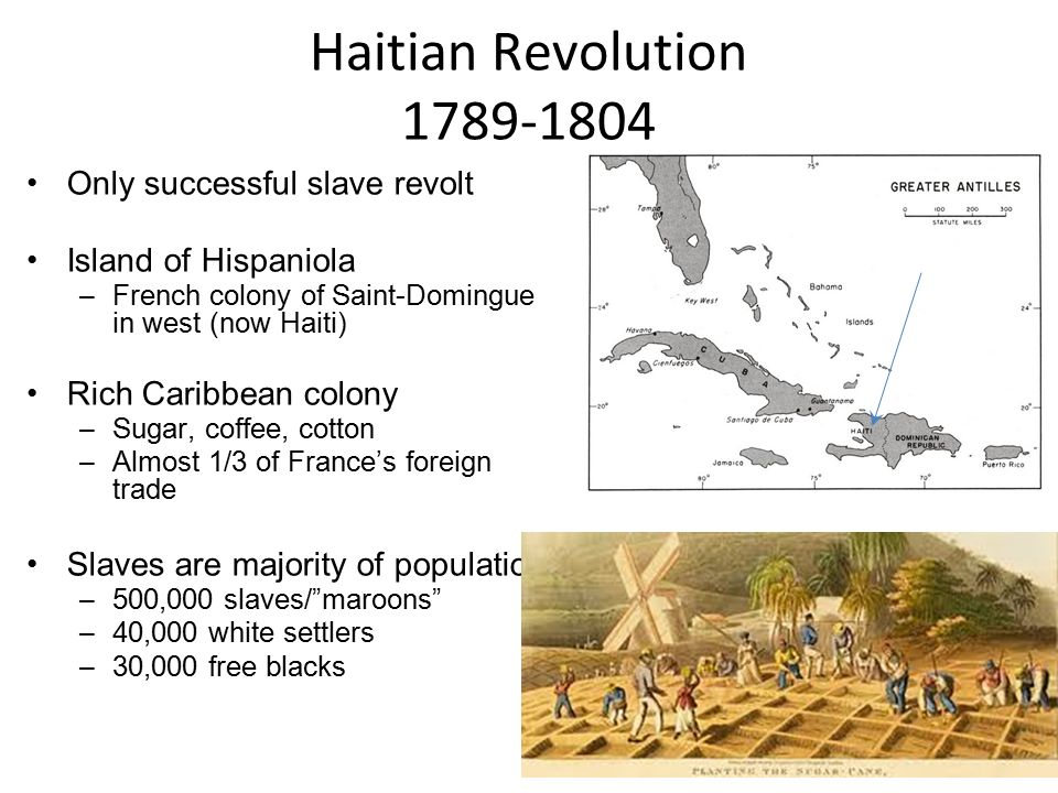 haitian revolution the slaves free non whites The haitian revolution  end of first mini-war in haitian rev –slaves not yet involved or even at issue  needed to end quarrel between whites & free blacks .