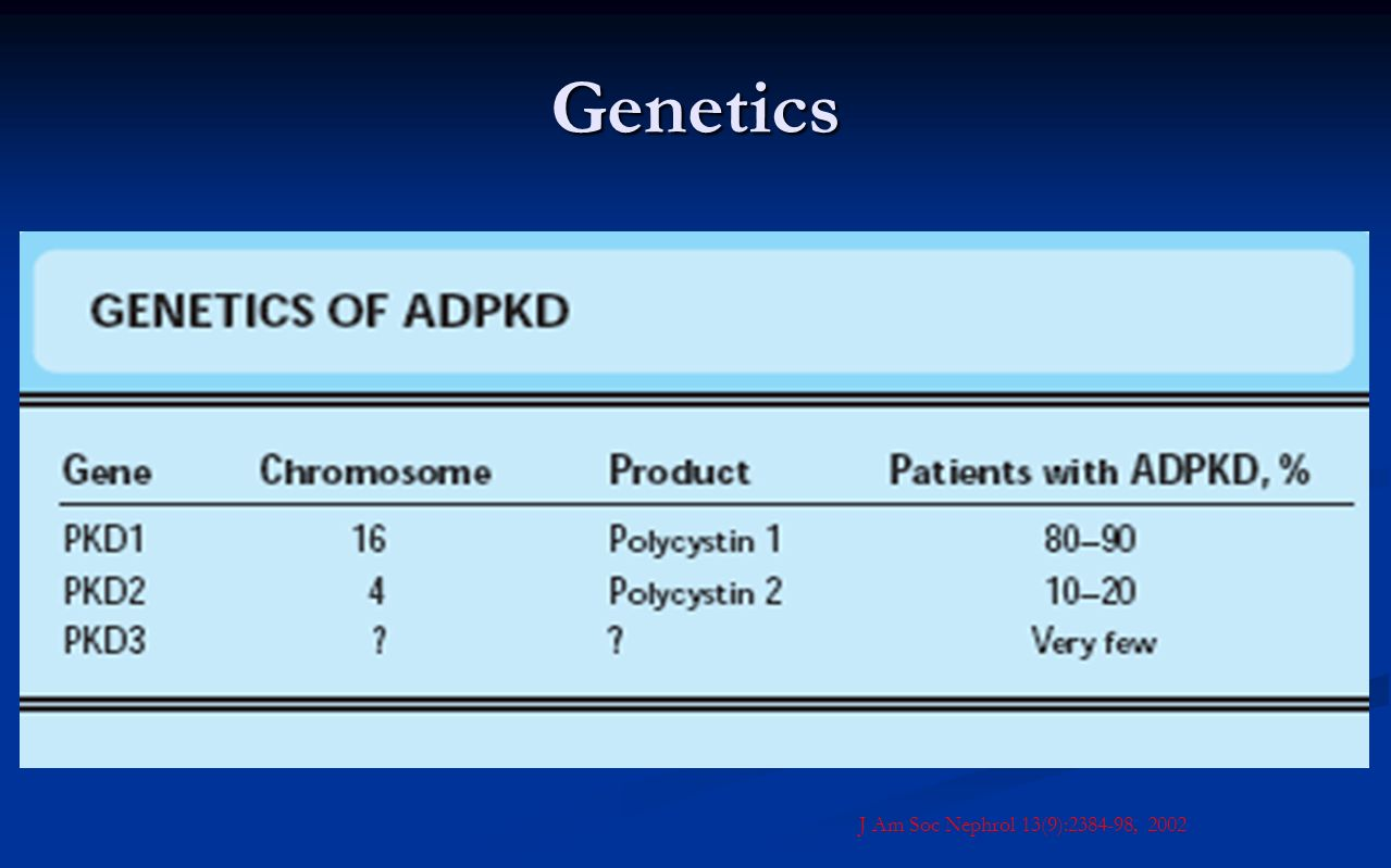 Genetics Usually a dysfunction of PKD1