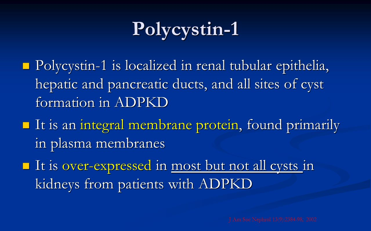 Polycystin-1 Polycystin-1 is localized in renal tubular epithelia, hepatic and pancreatic ducts, and all sites of cyst formation in ADPKD.