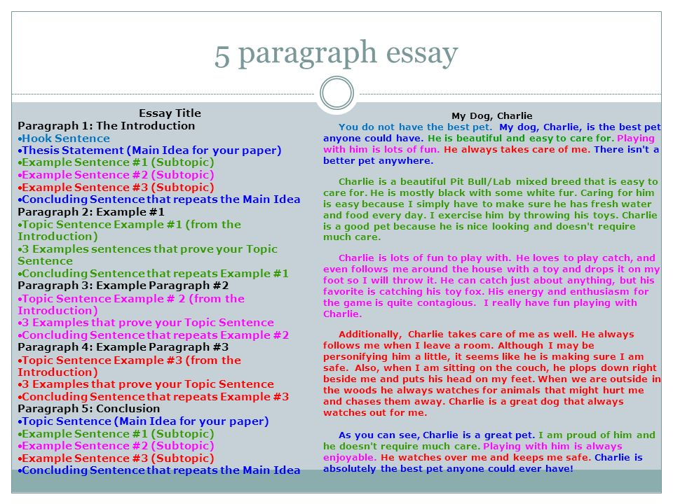 5 paragraph essay on goverment services