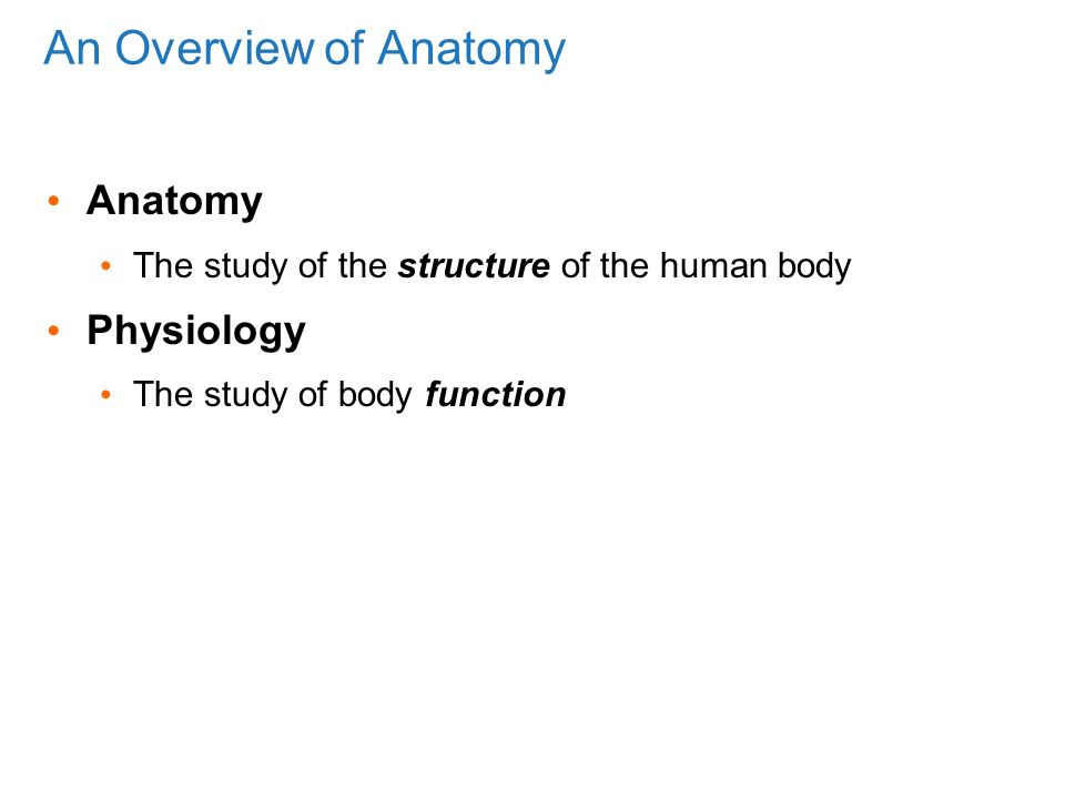 The Human Body: An Orientation Pages ppt video online download