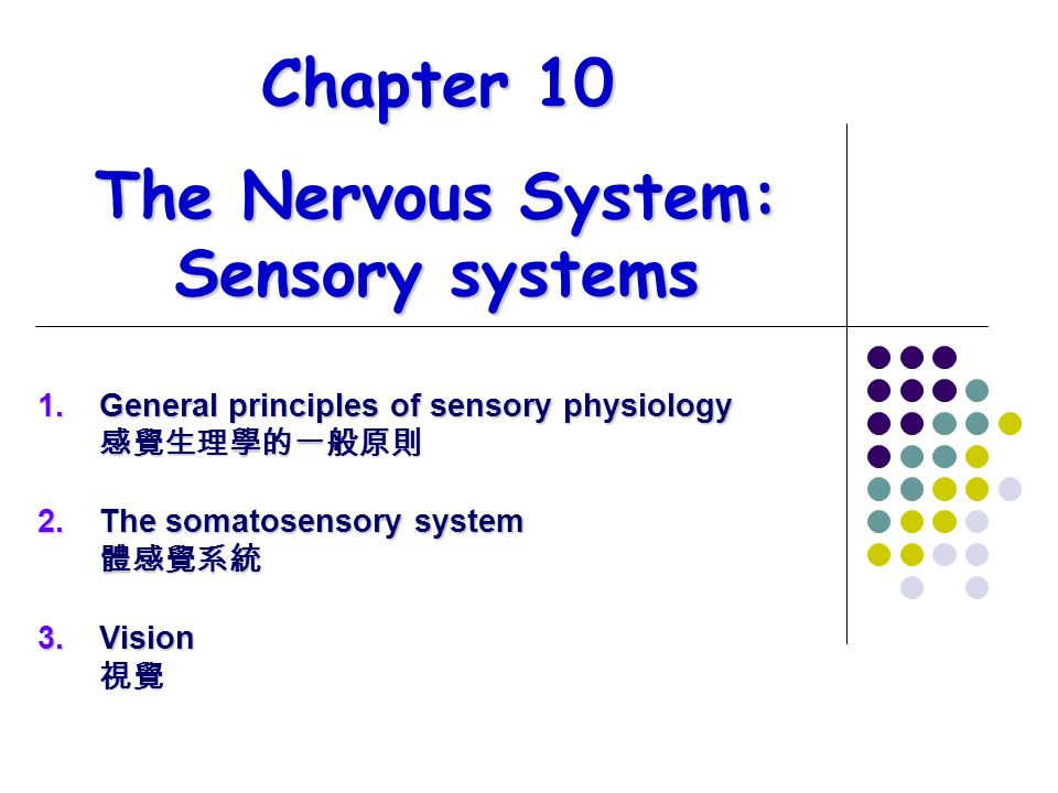 chapter 10 the nervous system