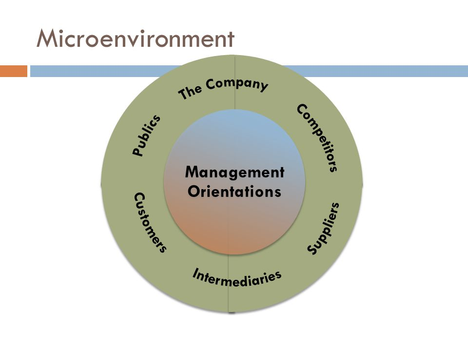 What are five different marketing management orientations