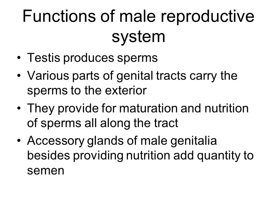 Before and After with Nutrition reproductive system