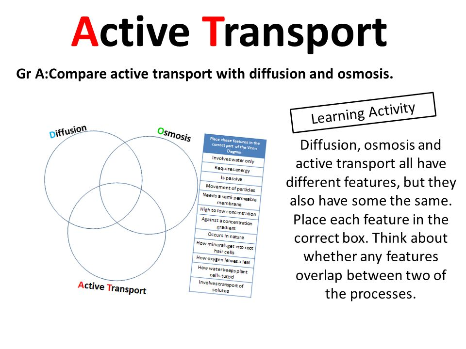 activity 5 simulating active transport Action potential simulation directions struggling with during the simulation activity that all active transport must occur between.