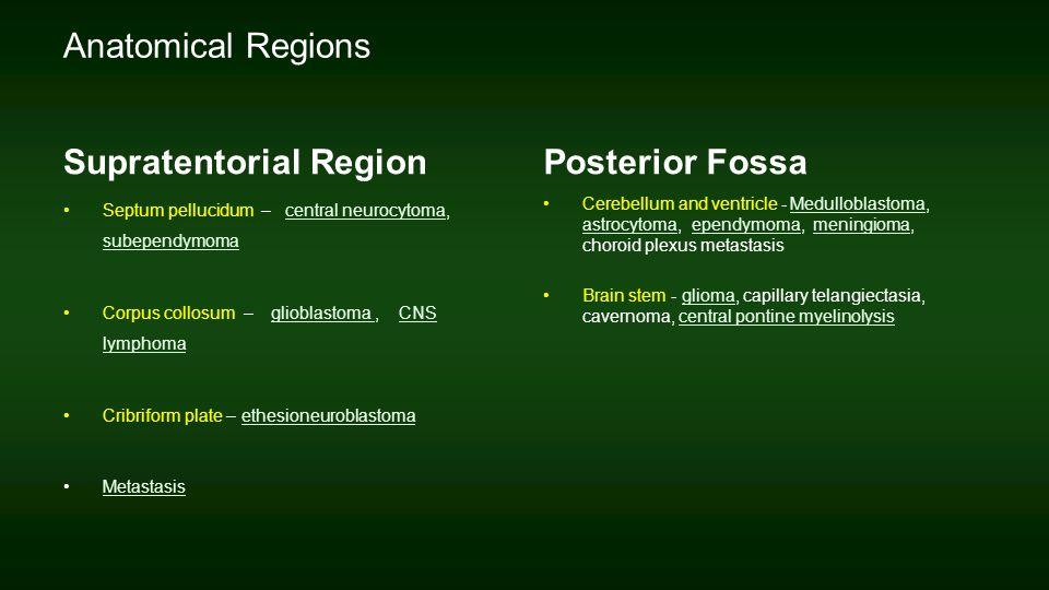 metastasis research protocols analysis of cells
