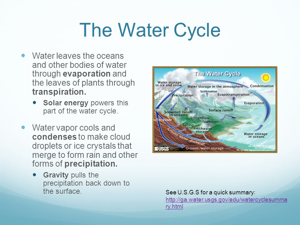Earth's Systems and Cycles - ppt download