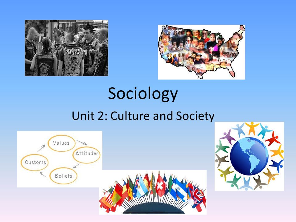 sociology system Some essayshark