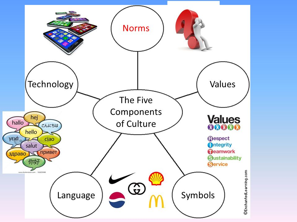 the five main components of language Best answer: the five components are the building blocks of language components of language linguistic study involves a search for patterns in the way speakers use language linguists aim to describe these patterns by reducing them to a set of rules called a grammar.