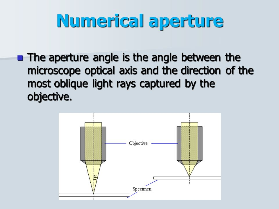 relationship between number and numerical aperture of light