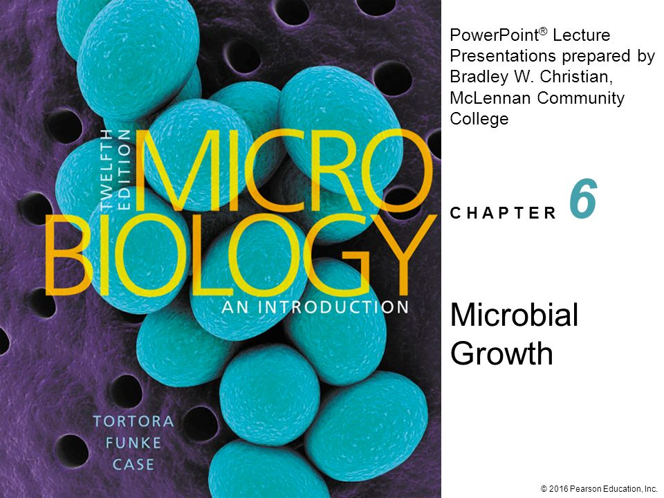 Powerpoint lessons on bacterial growth