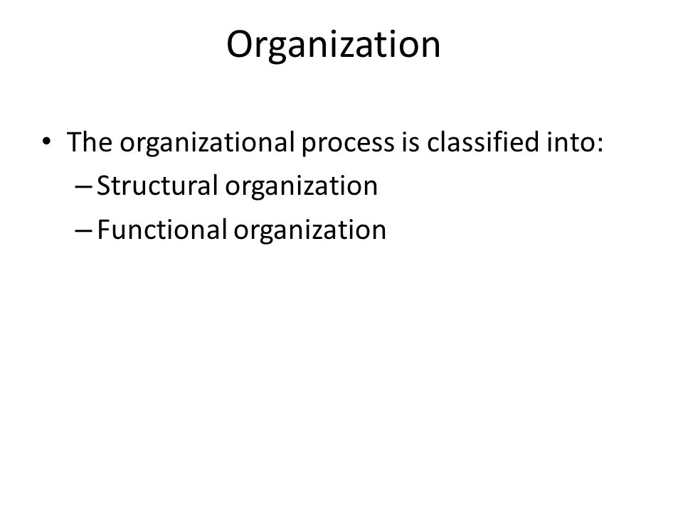 Organization The organizational process is classified into: