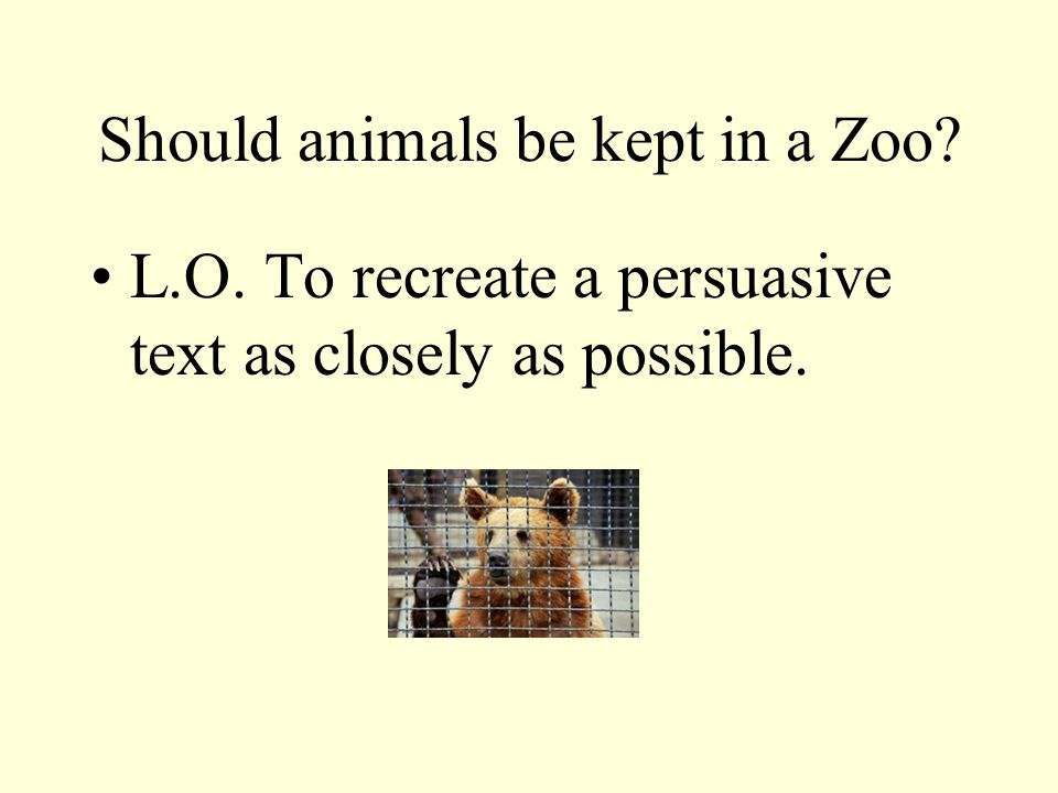 animals should not be kept in zoos persuasive essay Wild animals are kept in captivity for a variety of reasons and in a range of environments, including zoos and circuses, scientific laboratories and also as pets at home caring for a captive animal takes time, money and knowledge to provide everything the animal needs, such as food, water and the correct environment, to prevent suffering and ensure.