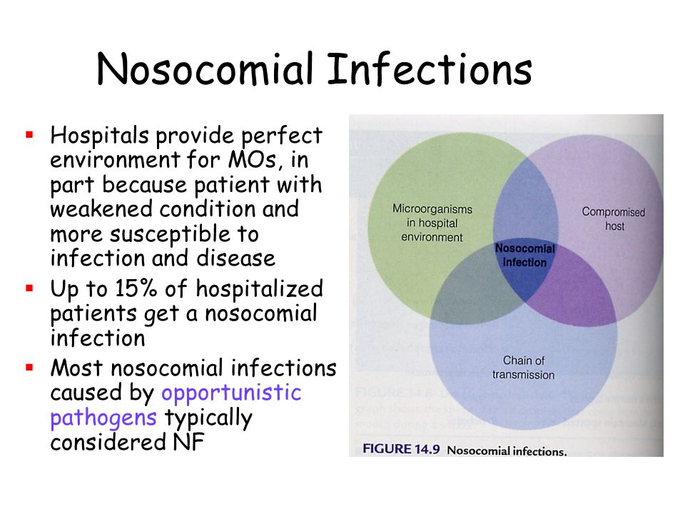 types of patients susceptible to nosocomial infections Hospital acquired infections (hai) are acquired by patients and health personnel alike in a hospital setting hai can be life-threatening and need to be promptly diagnosed and treated major .