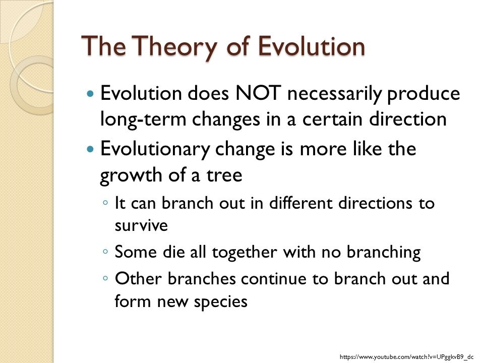 evolution of the theory of forms The acceptance of biological evolution is , some churches still maintain that there was a special and independent creation of every species and that life forms do this belief that the earth and life on it are only about 6000 years old fit neatly with the then prevalent theory.
