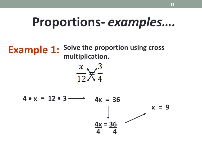 Math homework help proportions