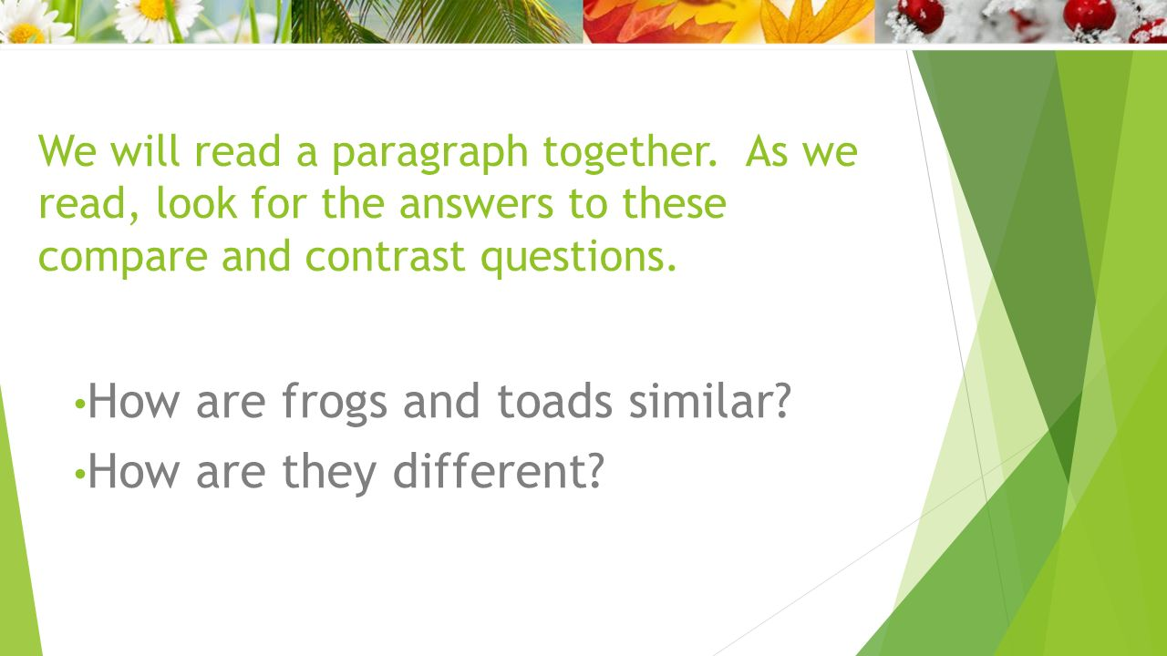 Comparing and Contrasting with Frog and Toad