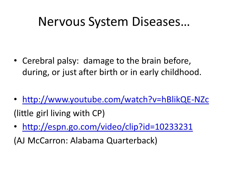 nervous system youtube videos