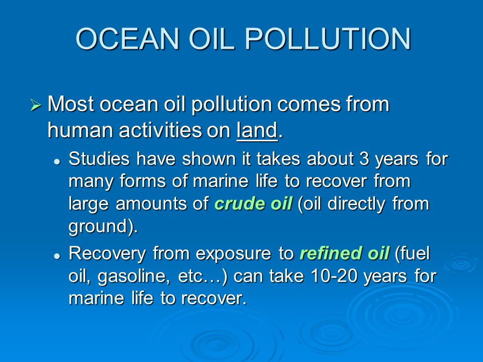 human errors and oil pollution from That oil spills are bad for the environment is a oil spills kill birds oil-covered birds are practically a universal symbol of the there was an error.