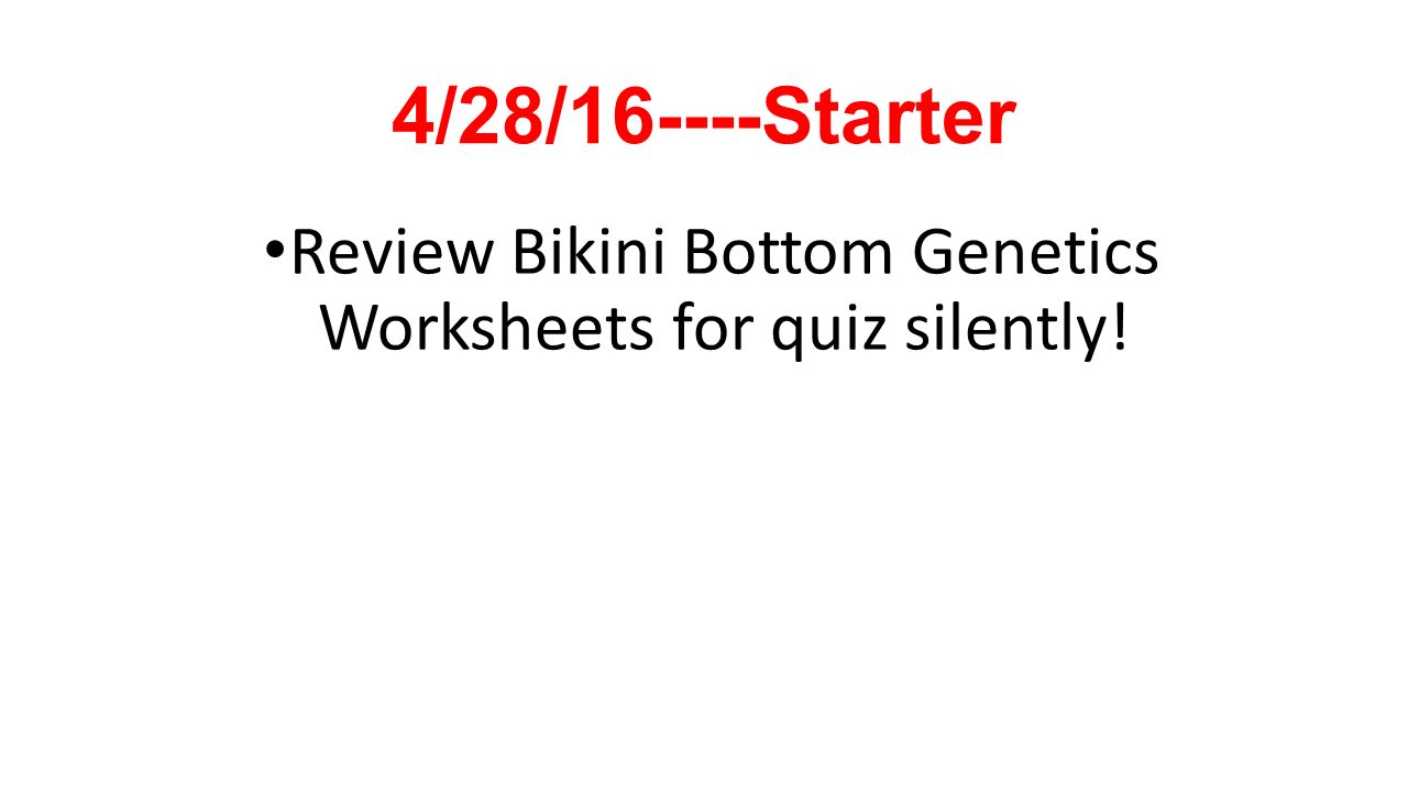 Starter 012616 Copy and Answer on p2 ppt download – Bikini Bottom Genetics Worksheet