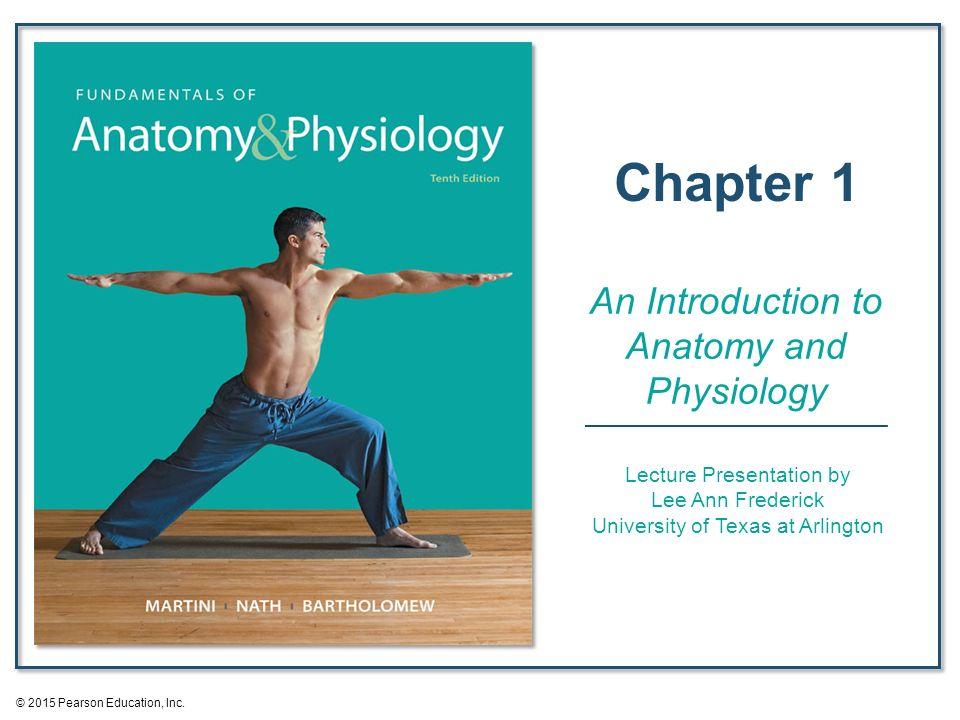 Erfreut Menschliche Anatomie Pearson Fotos - Menschliche Anatomie ...
