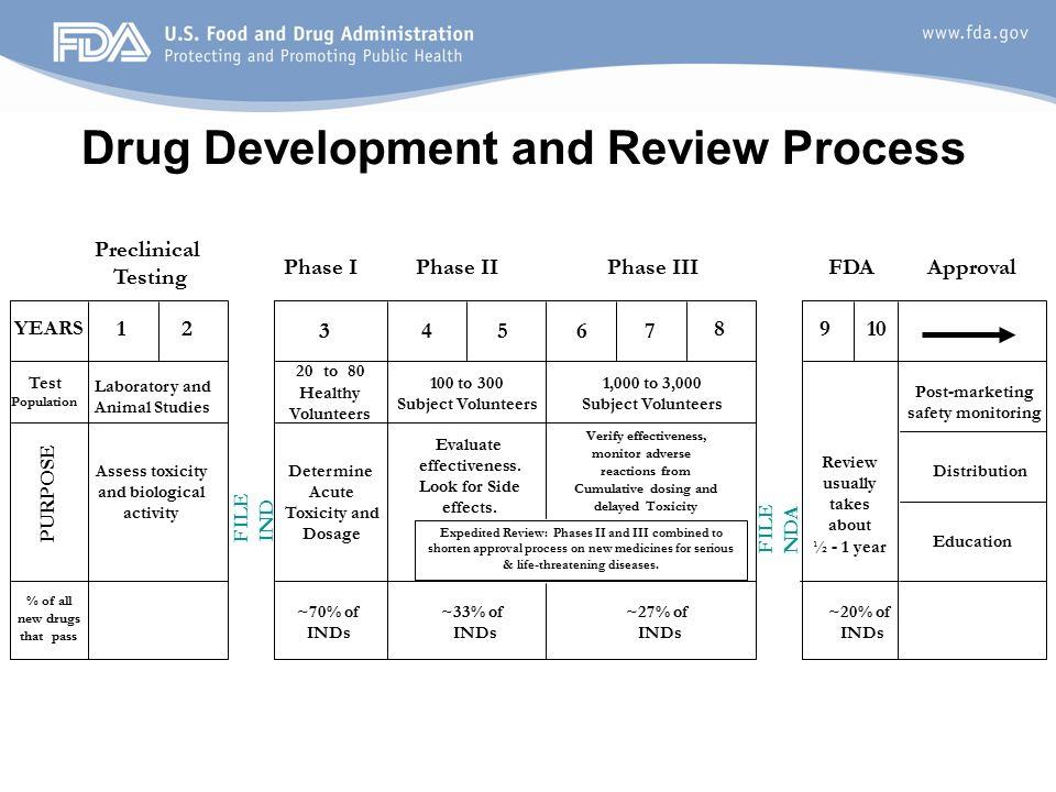 Activites During Dmpk Drug Development – Wonderful Image Gallery