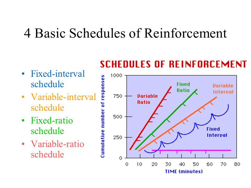 Schedules of Reinforcement - ppt video online download