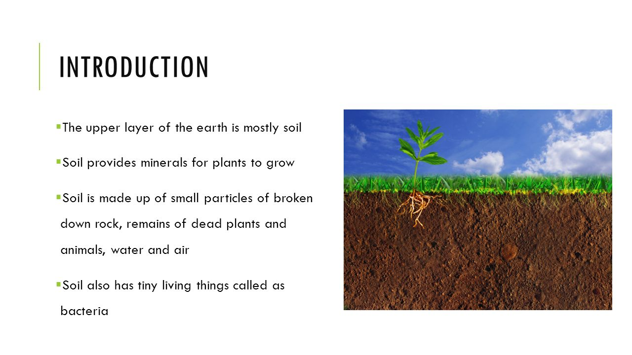 Soil erosion conservation ppt video online download for Introduction of soil