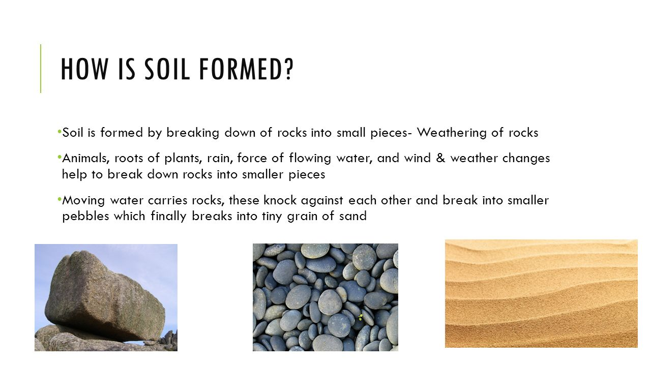 100 weathering and soil formation worksheet for Explain the formation of soil
