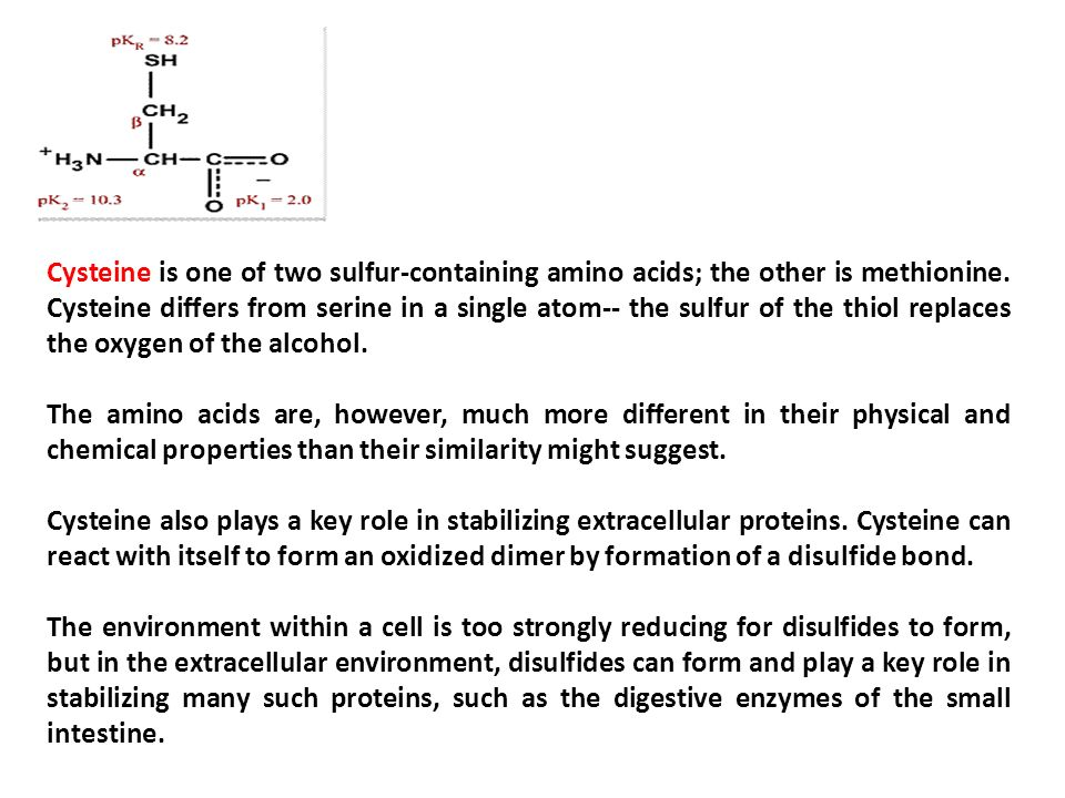 Chapter: 6 Amino acids Dr. Gobinath Pandian - ppt video online ...