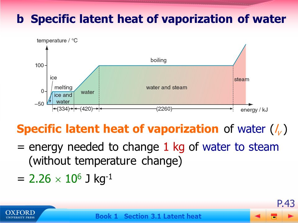 b Specific latent heat of vaporization of water  sc 1 st  SlidePlayer & Book 1 Section 3.1 Latent heat - ppt download