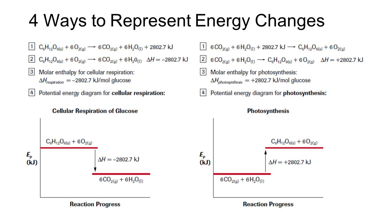 52 calorimetry and enthalpy ppt video online download enthalpies potential energy diagrams representing enthalpy changes 19 4 ccuart