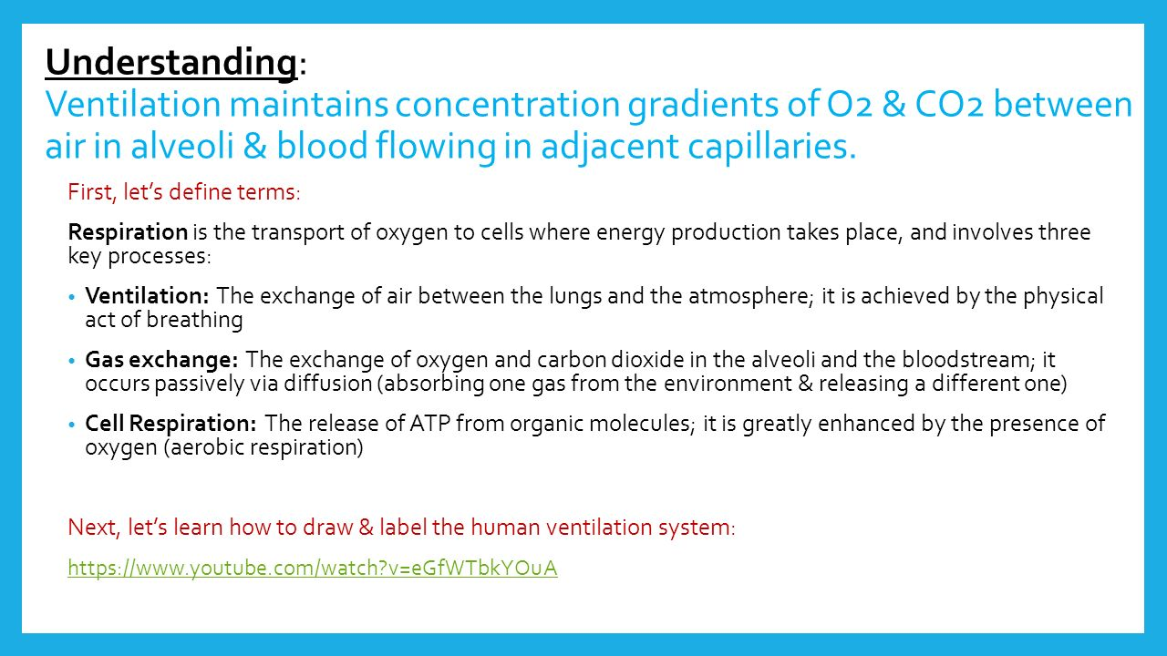 6.4 gas exchange. - ppt download