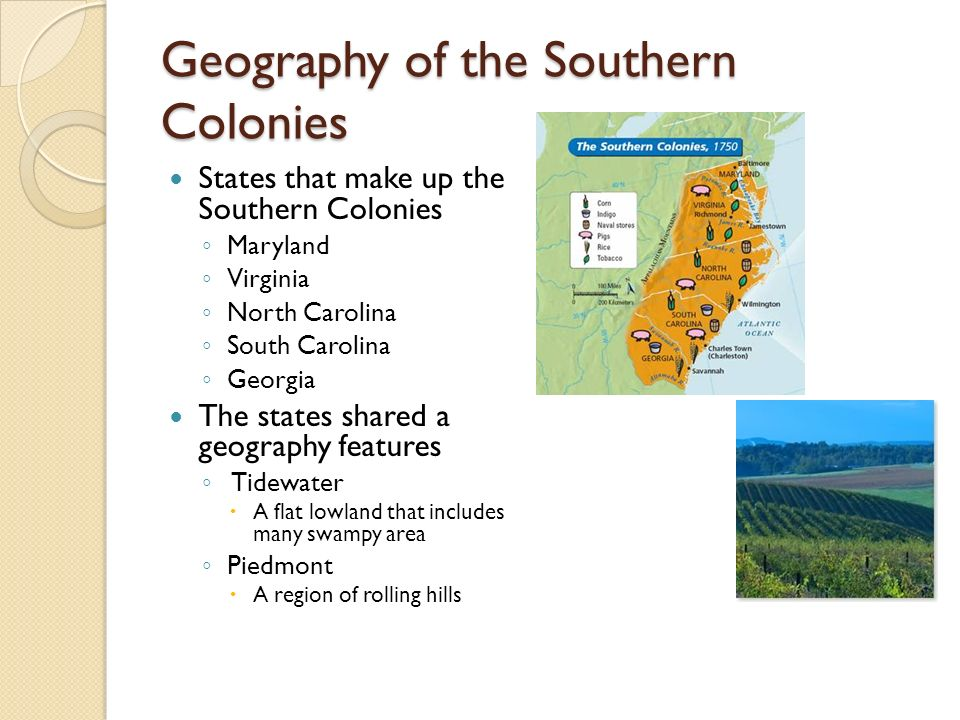 colonies take root Powerpoint created based on america: history of our nation textbook topics include: - the first english settlements - colonial regions - spanish.
