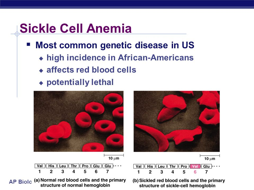 sickle cell anemia a red blood cell disorder Scientists have designed what appears to be a powerful gene therapy strategy that can treat both beta-thalassemia disease and sickle cell anemia they have also developed a test to predict patient response before treatment.