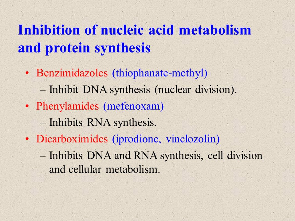 metabolism cell membrane and protein synthesis Cell structure if a peripheral membrane protein were synthesized in the  c) the  ability to perform lipid metabolism and chemically neutralize.