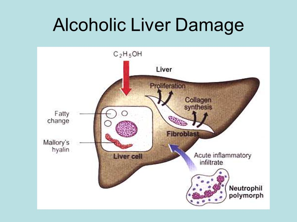 how to help liver damage