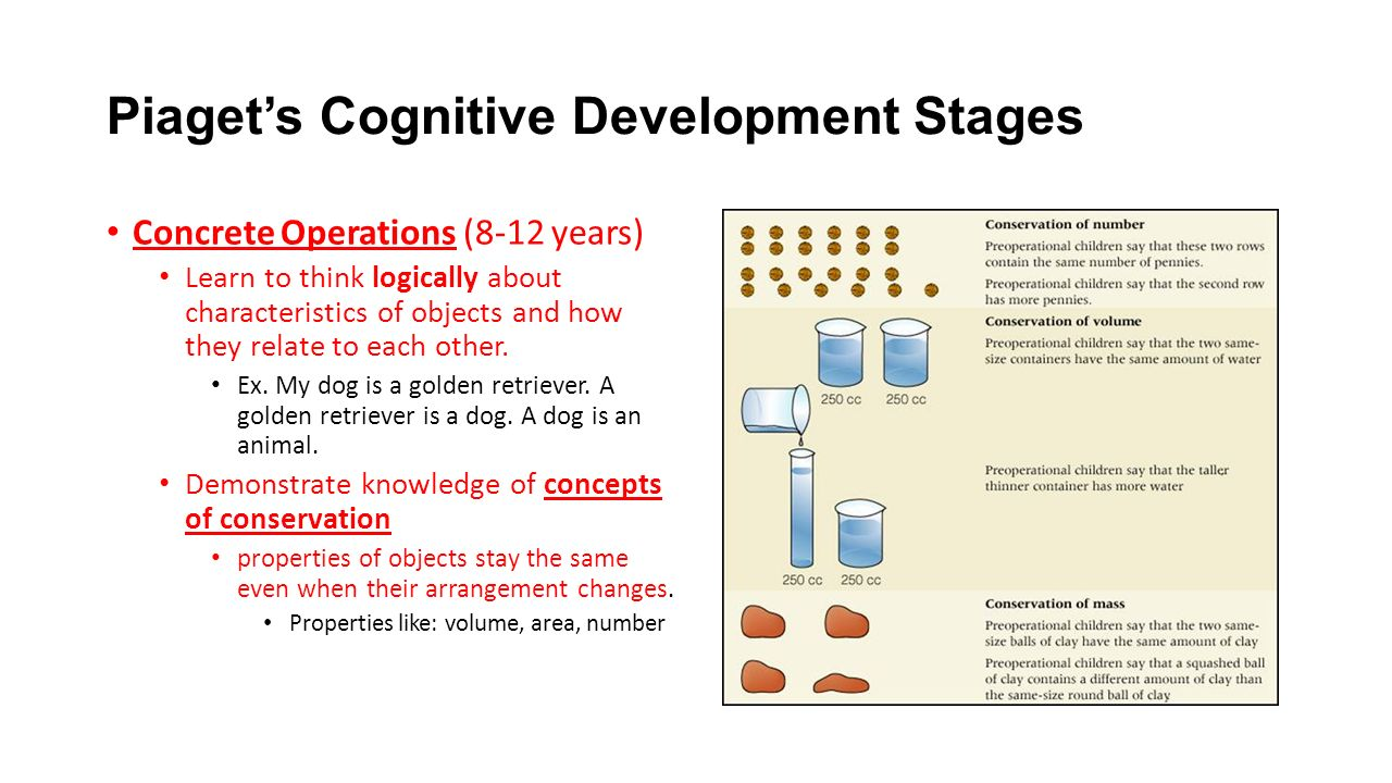 piagets theory of cognitive developmental stages The piaget stages of development is a blueprint that describes the stages of normal intellectual development, from infancy through adulthood this includes thought, judgment, and knowledge the stages were named after psychologist and developmental biologist jean piaget, who recorded the intellectual development and abilities of.